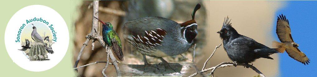 Sonoran Audubon Society